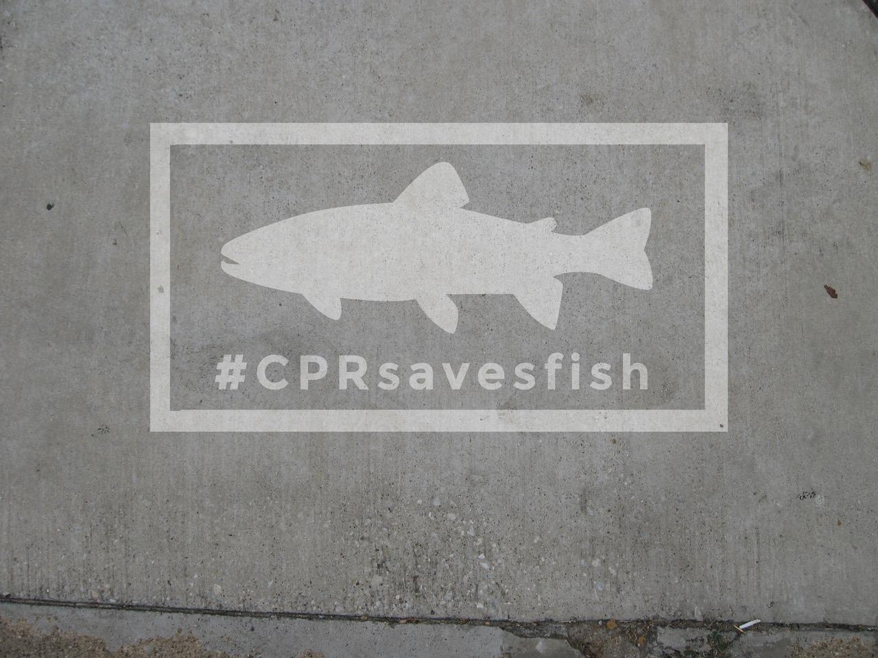 https://fishinginireland.info/cprsavesfish/wp-content/uploads/2017/07/CPRsavesfish-Stencil-2-1.jpg