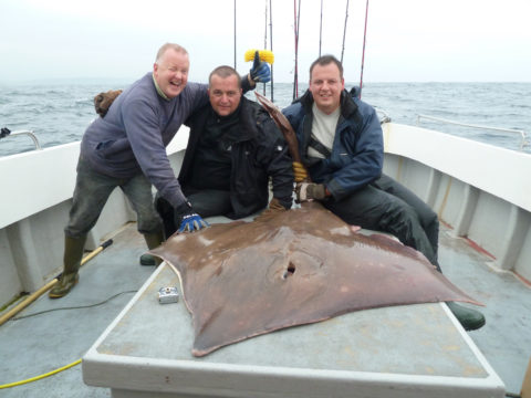 Skate caught by Krzysztof Knopp with his friend Mihal Figlarz and the skipper of the Lady Patricia Niall O Sullivan
