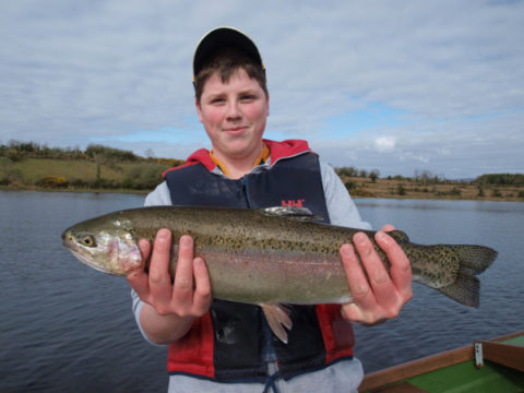 Some of the fine triploid rainbows caught at Lough Rowan on opening day 2012