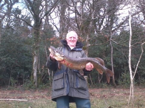 John O'Sullivan with a 16 lb Pike caught on an East Clare Lake