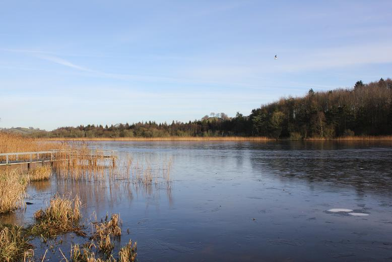 The Ice Covered Gas Lake in Castleblayney Today