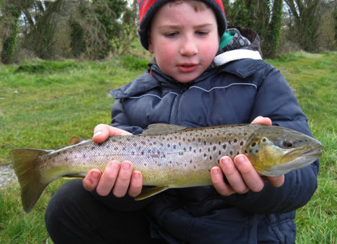 The Junior Piker admires his brown trout