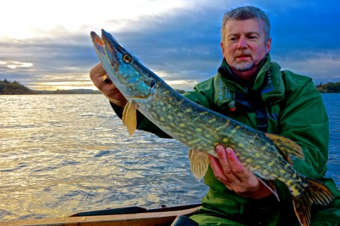 David Byrne IFI With A Small Lough Ramor Jack Pike