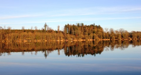 The Splendour of Lough Muckno Yesterday Afternoon