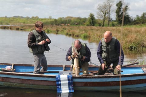 Preparing to put a big Cavan pike back after measuring the fish (95 cms)