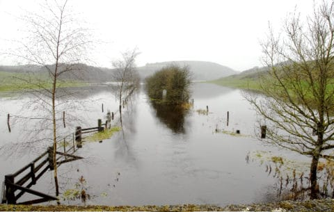 Derravaragh is up 3 meters we are told  and this is the   Moneen/Bishops river just outside Crookedwood on the Castlepollard Road. The River flows betweed the posts, giving you some idea of the flood water. Just imagine what's coming down the River Inny.