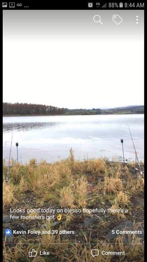 Blessington Lake