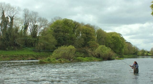The Munster Blackwater