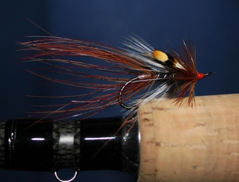 shrimp fly