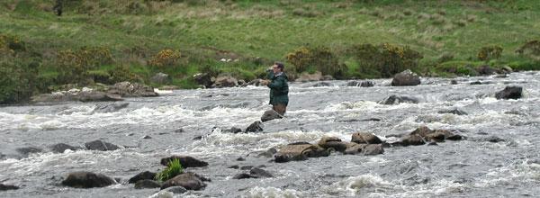 Salmon angler