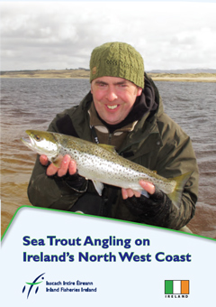 sea trout brochure