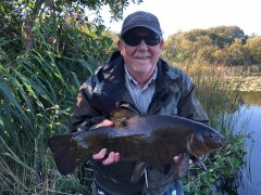 Alan Murray from Liverpool with nice tench and some great Roach fishing too is coming to Belturbet for over 20 years.