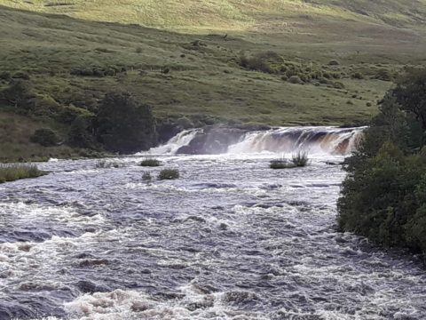 Another flood on the Erriff