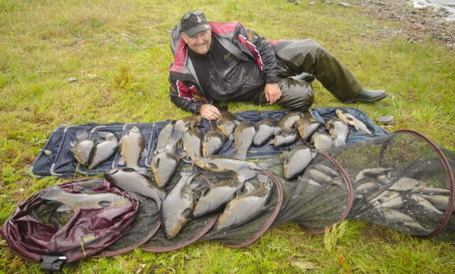 Angler with large bag of tench laid out
