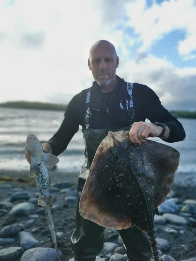 Ray and a dogfish