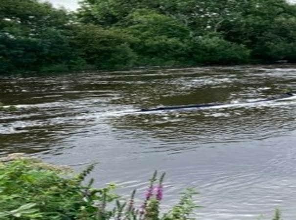 ilen in flood