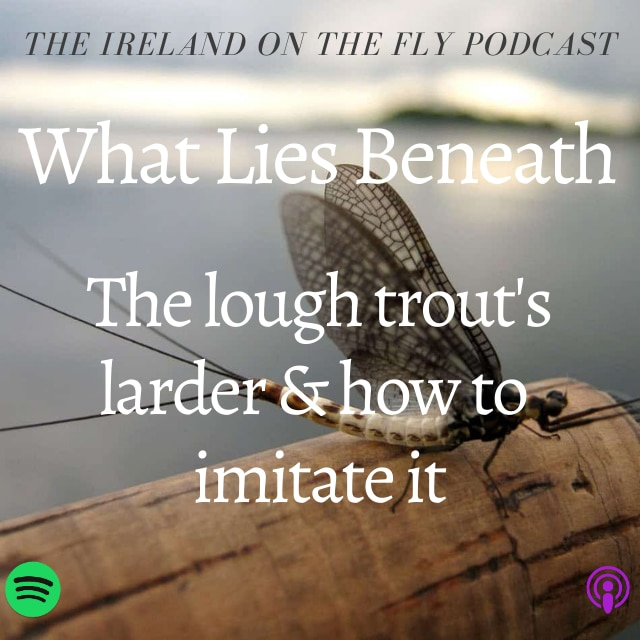 Ireland ont he Fly podcast