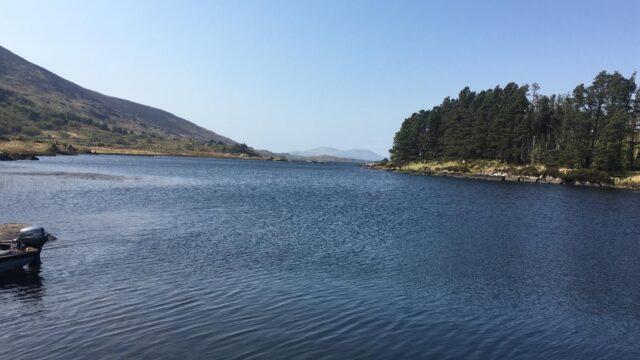 Lough Currane, Copal