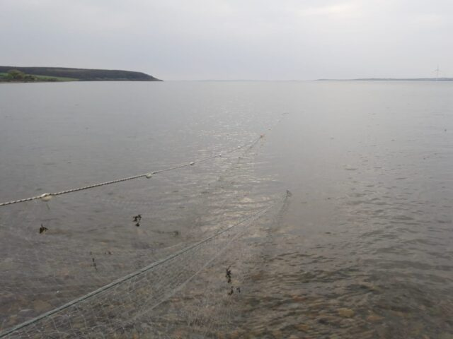 An example of an illegal fishing net measuring 160 metres in length in the Shannon Estuary seized by Inland Fisheries Ireland in 2020.