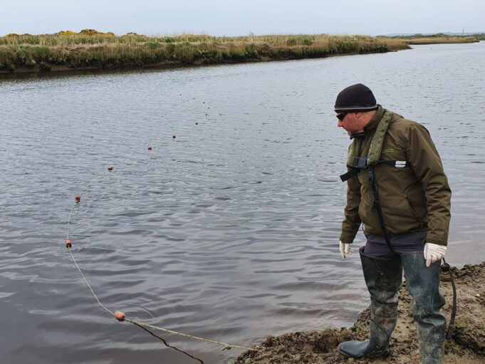 Inland Fisheries Ireland staff member John O'Connor in Kerry seizing an illegal fishing net from the River Feale in 2020.