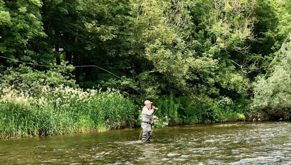 fly casting on the Nore