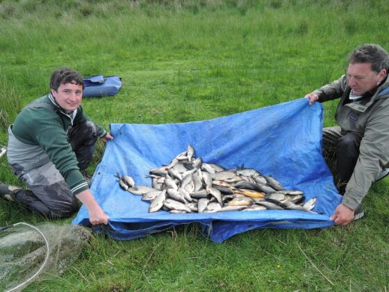 Nick and Alain with and good mixed catch of Hybrids, skimmers and Roach
